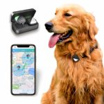 Pet GPS tracker for dogs pets No monthly fee real-time tracking device Anti-lost monitor(Only for Dog): Amazon.co.uk: Pet Supplies